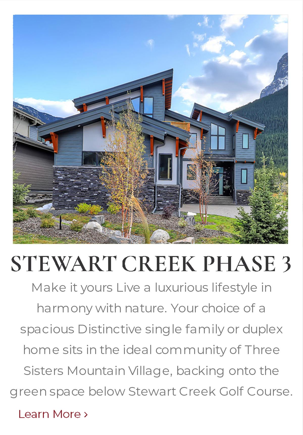 Stewart Creek Phase 3, mountain homes built by Distinctive Homes
